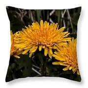Dandelions In Group  By Leif Sohlman Throw Pillow