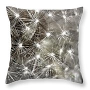 Dandillion Seed Head 2 Throw Pillow