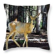 Dappled In Light Throw Pillow