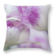 Dappled Tulips. The Tulips Of Holland Throw Pillow