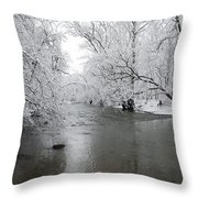 Darby Creek Dusting Throw Pillow