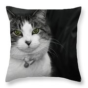 Dare To Look Into My Green Eyes Throw Pillow
