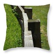 Daring The Soul Throw Pillow