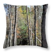 Dark And Cool Throw Pillow