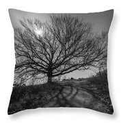 Dark And Twisted Throw Pillow