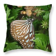 Dark Blue Tiger Butterfly Throw Pillow