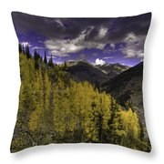 Dark Brightness Throw Pillow
