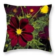 Dark Coreopsis' Throw Pillow