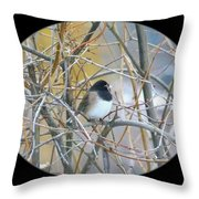 Dark- Eyed Junco Throw Pillow