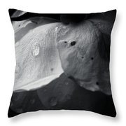 Dark Flower 22 Throw Pillow