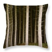 Dark Forest At Kielder Throw Pillow