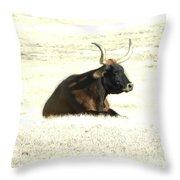 Dark Longhorn Throw Pillow