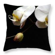 Dark Orchid Throw Pillow
