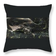Dark Phase Timber Throw Pillow