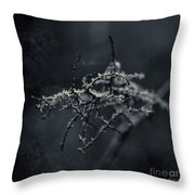 Dark Poetry Throw Pillow