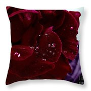 Dark Red Rose Throw Pillow