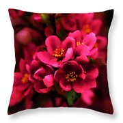 Dark Spring Dreams Throw Pillow