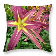 Dark Star Daylilies Throw Pillow