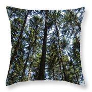 Dark Trees Throw Pillow