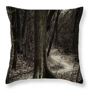 Dark Winding Path Throw Pillow