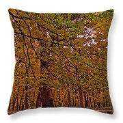 Darker Textured Autumn Trees Throw Pillow