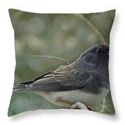 Darkeyed Junco  Throw Pillow