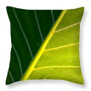 Darkness And Light - Elephant Ear Leaf Details Throw Pillow