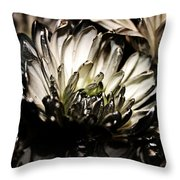 Darkness Prevails Throw Pillow