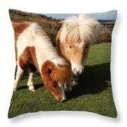 Dartmoor Ponies  Throw Pillow