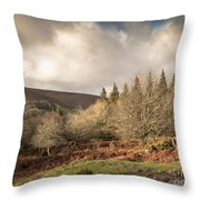 Dartmoor View Throw Pillow