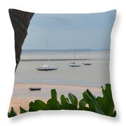 Fannie Bay 1.1 Throw Pillow