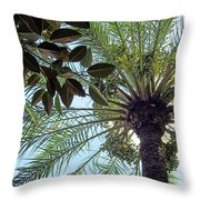 Date Palm And Rubber Tree Branch Throw Pillow