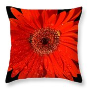 Datta What Have We Given Throw Pillow