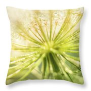Daucus Carota - Queen Anne's Lace - Wildflower Throw Pillow