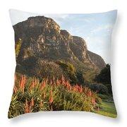 Dawn At Kirstenbosch Throw Pillow