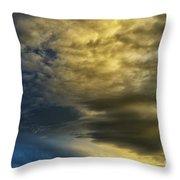 Dawn Beauty Throw Pillow