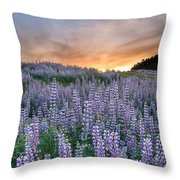 Dawn Of Lupine Throw Pillow