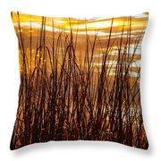 Dawn's Early Light Throw Pillow by Karen Wiles