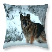 Dawn's First Light Throw Pillow by Sue Long