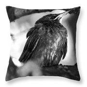 Dax's Bird Throw Pillow