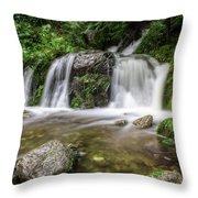 Day 1000 - Lower Forest Glen Falls Throw Pillow