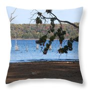 Day At The Lake Throw Pillow
