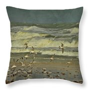 Day For The Birds Throw Pillow