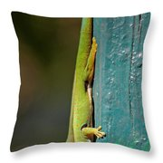 day geckos from Madagascar 1 Throw Pillow