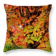 Day Glo Autumn Throw Pillow
