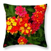 Day Glo Summer Throw Pillow