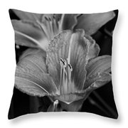 Day Lilies In Black And White Throw Pillow