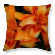 Day Lilies In Soft Focus Throw Pillow