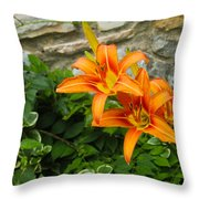 Day Lilly Throw Pillow