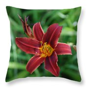 Day Lily 3648 Throw Pillow